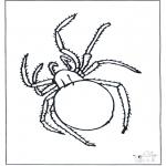 Coloriages d'animaux - Araignée