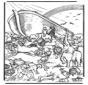 Arche de Noé 5
