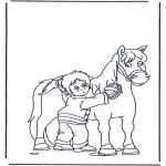 Coloriages d'animaux - Brosse le cheval