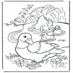 Coloriages d'animaux - Canards
