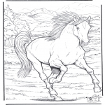 Coloriages d'animaux - Cheval 4
