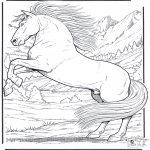 Coloriages d'animaux - Cheval 5