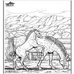 Coloriages d'animaux - Cheval 6