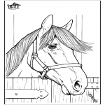 Coloriages d'animaux - Cheval 7