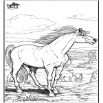 Coloriages d'animaux - Cheval 9