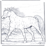 Coloriages d'animaux - Cheval au galop