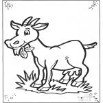 Coloriages d'animaux - Chèvre 2