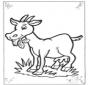 Chèvre 2