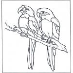 Coloriages d'animaux - Deux aras