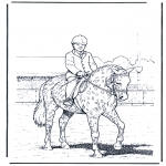 Coloriages d'animaux - Dressage