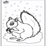 Coloriages d'animaux - écureuil 5