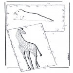 Coloriages d'animaux - Giraffe et phoque