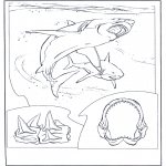 Coloriages d'animaux - Grand requin blanc