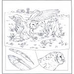 Coloriages d'animaux - Hibou à la chasse
