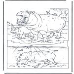 Coloriages d'animaux - Hippopotame 1