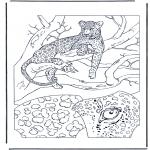 Coloriages d'animaux - Léopard 1
