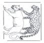 Lion et léopard