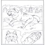 Coloriages d'animaux - Loup dans la neige