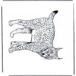 Coloriages d'animaux - Lynx