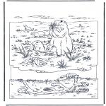 Coloriages d'animaux - Marmotte