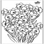 Coloriages faits divers - Narcisse