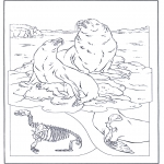 Coloriages d'animaux - Otaries