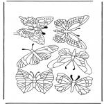Coloriages d'animaux - Papillons 1