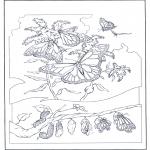 Coloriages d'animaux - Papillons 2