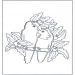 Coloriage thème - Perroquet amoureux