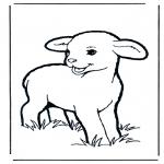 Coloriages d'animaux - Petit Agneau 1