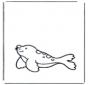 Petit phoque