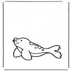 Coloriages d'animaux - Phoque 1