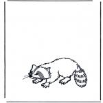 Coloriages d'animaux - Raton laveur