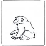 Coloriages d'animaux - Singe 2