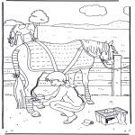 Coloriages d'animaux - Soins du cheval