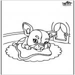 Coloriages d'animaux - Spongebob - planche à roulettes