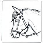 Coloriages d'animaux - Tête de cheval 2