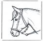 Tête de cheval 2