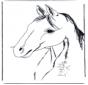 Tête de cheval 3
