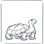 Coloriages d'animaux - Tortue terrestre